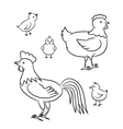 Outlined chicken family vector image