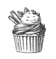 tasty ice cream cake sweet dessert vintage vector image vector image