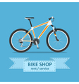 bike vector image