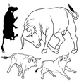 Bull Collection vector image vector image