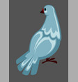 dove or pigeon bird wild or domestic flying vector image vector image