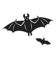 flying bat icon simple style vector image
