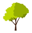 Green tree with fluffy crown icon flat style vector image vector image