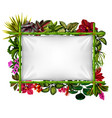 beautiful botanical frame with bamboo vector image vector image