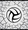 cracks circle volleyball vector image vector image