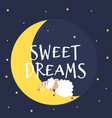 cute little sheep on the night sky sweet dreams vector image vector image