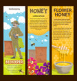 beekeeping apiary and honey banners vector image