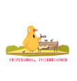 chicken paparazzi costume composition vector image vector image