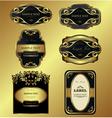 Gold-framed labels vector image vector image