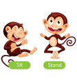 opposite words with sit and stand vector image vector image