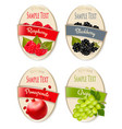 set of labels of berries and fruit raspberry vector image