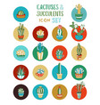 cartoon cacti and succulent icon set vector image