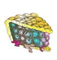 color delicious berry pie sweet dessert vintage vector image