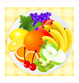 Fruit plate vector image