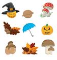 Halloween Seasonal Elements vector image