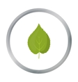 Linden leaf icon in cartoon style for web vector image