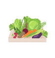 ripe organic vegetables in wooden box isolated on vector image vector image