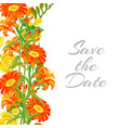 save date card with summer orange flowers vector image vector image