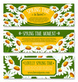 spring banner set with springtime flowers vector image vector image