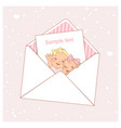 twin baby shower card vector image
