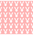 White Rabbit Pink Background vector image vector image