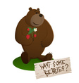 A brown smiling sitting bear vector image