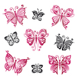 Butterflies summer objects vector image vector image
