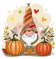 cartoon gnome with two pumpkins and birds vector image vector image