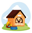 cute dog in wooden house and food vector image vector image