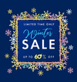 elegant winter sale clored snow banner vector image