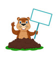 groundhog crawled out hole and holds a sign vector image vector image