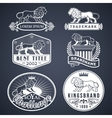 Lion labels white vector image vector image