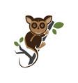 tarsius animal character vector image vector image