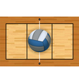 Volleyball on a Volleyball Court vector image vector image