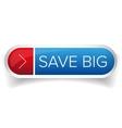 Save Big button vector image