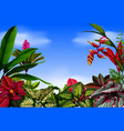 a beautiful view with and the flowers around it vector image