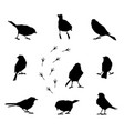 a set of silhouettes of winter birds vector image vector image