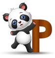alphabet p with panda cartoon vector image