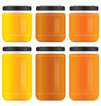 honey jars vector image
