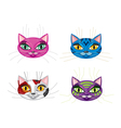 kittens muzzles vector image vector image