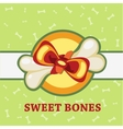Sweet bones great gift for a pet vector image