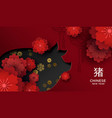 chinese new year of pig 2019 floral paper cut card vector image