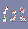 cute beagle dog collection funny adorable pet vector image vector image