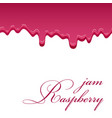 raspberry sweet jam 3d realistic liquid seamless vector image