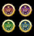 vip golden labels set premium medals different vector image vector image