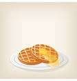 Waffles with a piece butter vector image