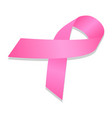 woman breast cancer ribbon icon isometric style vector image vector image