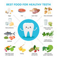 best food for helthy teeth and cute tooth cartoon vector image vector image