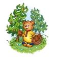 bruin bear with pine cones vector image vector image