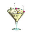color glass with fruit scoop ice cream vintage vector image